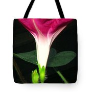 Morning Glory Stand Up Tote Bag