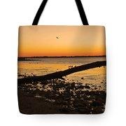 Morning Glow #2 Tote Bag