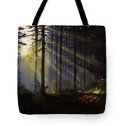 Morning Glow In The Forest Tote Bag