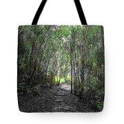 Morning Hike On Waihee Tote Bag