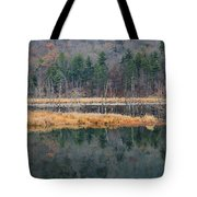 Morning In The Mirror Tote Bag