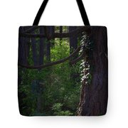 Morning In The Pacific Northwest Tote Bag