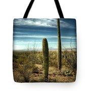 Morning In The Sonoran Desert Tote Bag