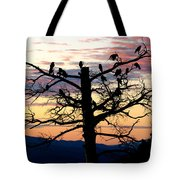 Morning In The Rockies Tote Bag
