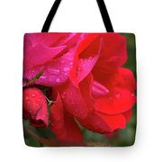 Morning Kiss Tote Bag