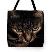 Morning Kitten  Tote Bag
