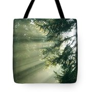 Morning Light IIi Tote Bag