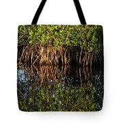 Morning Light Mangrove Reflection Tote Bag