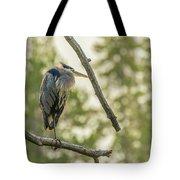 Morning Light On Great Blue Heron Tote Bag
