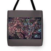 Morning Lit Magnolia Tote Bag
