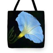 Morning Magic Tote Bag