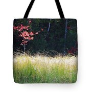 Morning Melody On Hopkins Stream Tote Bag