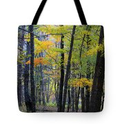 Morning Mist On The Path Tote Bag