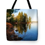 Morning On Chad Lake 4 Tote Bag by Larry Ricker