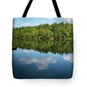 Morning On Lincoln Pond Tote Bag