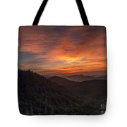 Morning On The Parkway. Tote Bag by Itai Minovitz