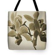 Morning Orchid Tote Bag by Ben and Raisa Gertsberg