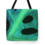 Morning Rain Tote Bag