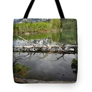 Morning Reflection Of Cathedral Group Tote Bag