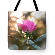 Morning Rose Tote Bag