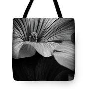 Morning Rose Mallow Tote Bag