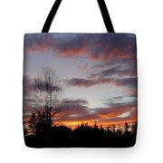 Morning Silhouetted - 1 Tote Bag