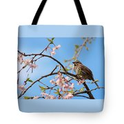 Morning Song Sparrow Tote Bag