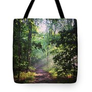 Morning Sunshine On The Appalachian Trail Tote Bag