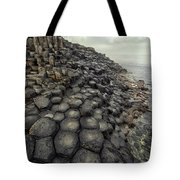 Morning With Giants Tote Bag