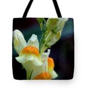 Mornings Natural Bling Tote Bag