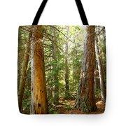 Morton Pines Tote Bag
