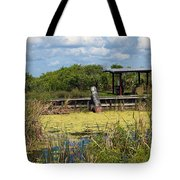 Mosquito Impoundement In Florida Tote Bag