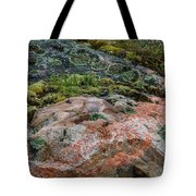 Moss And Lichen Abstract Tote Bag