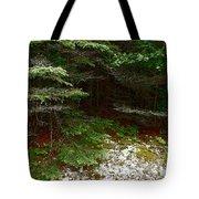 Moss And Lichen Tote Bag