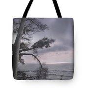 Moss Beach Tote Bag