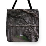 Moss Beach Trees 4191 Tote Bag