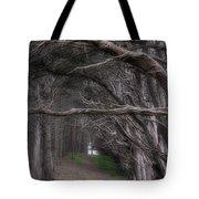 Moss Beach Trees 4191 Tote Bag