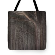 Moss Beach Trees Tote Bag