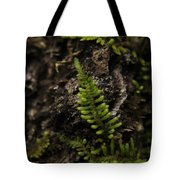 Moss Colony Tote Bag