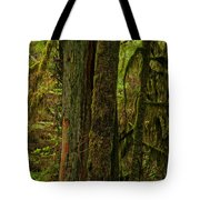 Moss Covered Giant Tote Bag