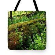 Moss Covered Log 2 Tote Bag
