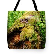 Moss Covered Log 3 Tote Bag