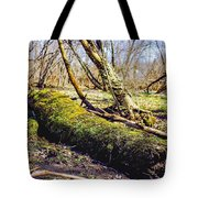 Moss Covered Log Tote Bag
