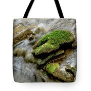Moss Covered Rock Tote Bag