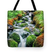 Moss Covered Stream Tote Bag