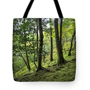 Moss Forest - Ginkakuji Temple - Japan Tote Bag