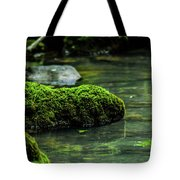 Moss In A Spring Tote Bag