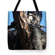 Moss Nest Tote Bag