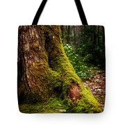Moss On A Tree Tote Bag