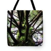 Moss Tree Tote Bag